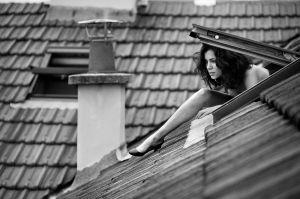Loréna - Une chatte sur un toit brûlant